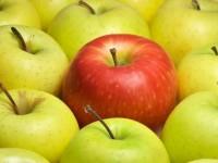 уникальное яблоко