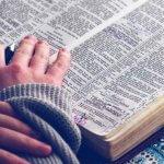Читабельность текста и её составляющие