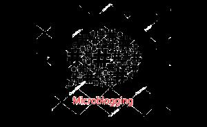 mic-blog_45